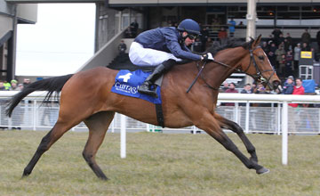 MOTH RIDDEN BY JOSEPH O'BRIEN