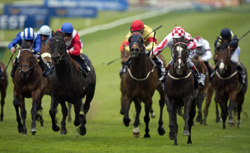 Sole Power - Newmarket 04.05.2013