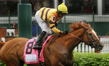 Wise Dan (Wiseman's Ferry) and jockey Jose Lezcano win the Woodford Reserve Turf Classic (Gr I) at Churchill Downs 5/4/13. Trainer: Charles LoPresti. Owner: Morton Fink