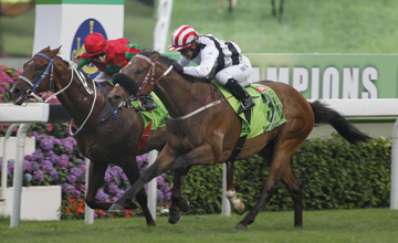 Hong Kong runner Dan Excel (No. 3), trained by John Moore and ridden by Weichong Marwing, wins the Group 1 Champions Mile at Sha Tin Racecourse today. Helene Spirit (No. 9, red cap), and Packing Whiz (No. 2, purple cap), finish second and third in this H