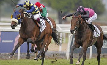 Feuerblitz (Robert Havlin) wins Italian Derby 2012