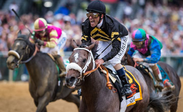 Oxbow (Awesome Again) and jockey Gary Stevens win the Preakness Stakes
