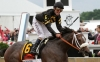 Oxbow Awesome Again and jockey Gary Stevens win the Preakness Stakes