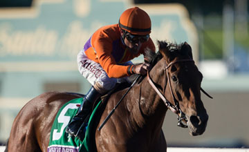 Beholder and Gary Stevens run out convincing winners of the Distaff