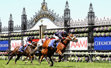 MELBOURNE, AUSTRALIA - NOVEMBER 02: Jim Cassidy riding Zoustar crosses the line to win race 4 the Coolmore Stud Stakes during Derby Day at Flemington Racecourse on November 2, 2013 in Melbourne, Australia. (Photo by Quinn Rooney/Getty Images)