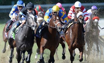 Mike Smith (black) rides Mizdirection to a win in the Turf Sprint during the Breeders' Cup World Championships at Santa Anita Park on November 2, 2013