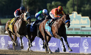 Martin Garcia rides Secret Circle #9 ahead of Majestic Stride #4 ridden by Edwin Maldonado and Gentlemen's Bet ridden by Javier Castellano to win the Sprint during the Breeders' Cup World Championships at Santa Anita Park on November 2, 2013