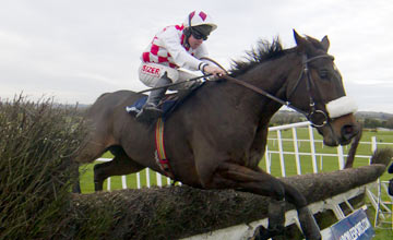 Flemenstar and Andrew Lynch