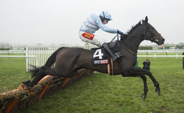 The Liquidator (Tom Scudamore) jumps the final flight and wins the Supreme Trial Novices hurdle