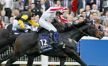 Slade Power - Champions Sprint Stakes 19.10.13