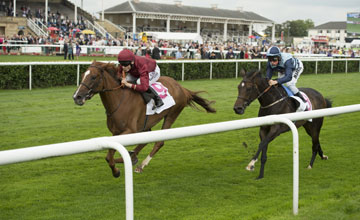 Phiz (right) can't keep up with The Lark in the Park Hill Stakes