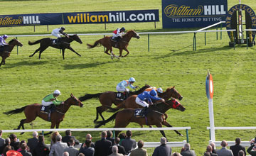 CIRCUITOUS and Tom Eaves (red Blinkers) win the William Hill Ayr Bronze Cup at Ayr Racecourse 20/9/13