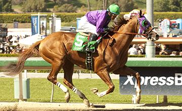 California Chrome and Victor Espinoza win the Grade I $1,000,000 Santa Anita Derby Saturday, April 5, 2014 at Santa Anita Park, Arcadia, CA.