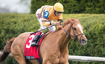 Two-time Reigning Horse of the Year Wise Dan Triumphs in Maker's 46 Mile