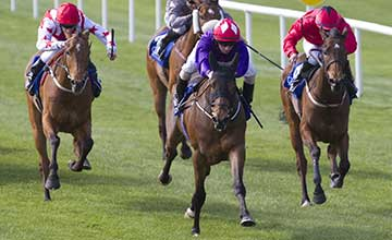 Sruthan - Big Bad Bob Gladness Stakes The Curragh