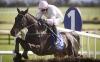 Adriana Des Mottes and Paul Townend win the Irish Stallion Farms EBF Novice Hurdle Grade 1