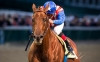 World Class: Dortmund could be next Baffert superstar