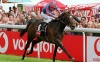 Derby winner High Chaparral dies aged 15