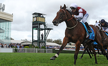 Earthquake wins at Melbourne 22/2/2014
