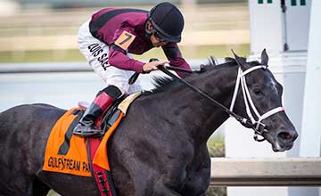 Cairo Prince wins the Holy Bull Stakes