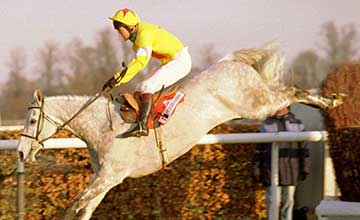 One Man - King George, Kempton 1996