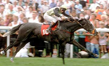 Further Flight - Ebor 1990