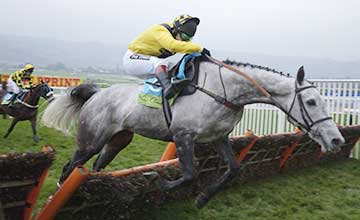Rooster Booster - BULA Hurdle 2002