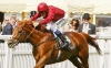Rains bring relief to Gosden for Eagle Top King George bid
