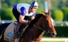 USA: Belmont spoiler Tonalist back for Jim Dandy