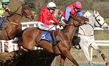 Sailors Warn - Leopardstown 2.3.14