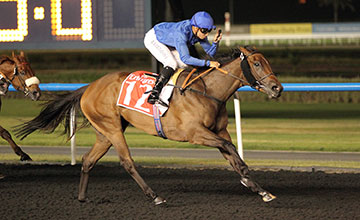 Shuruq strides clear to win the Burj Nahaar at Meydan - NOT FOR RP USE