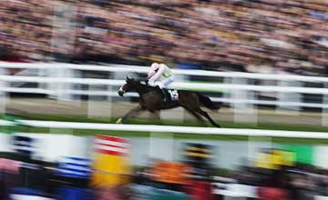 Vautour (Ruby Walsh) wins
