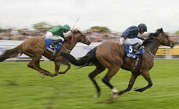 Orchestra beats Romsdal in the Chester Vase