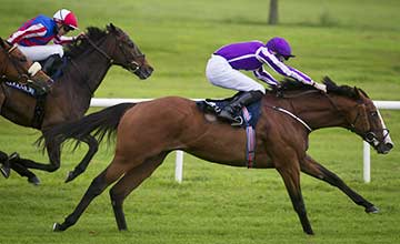 Leading Light wins the Coolmore Vintage Crop Stakes