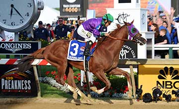 California Chrome - Preakness Stakes 17.5.14