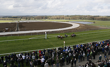 The Greyhound Track At Towcester Will Soon Be Operational