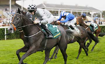 Agnes Stewart: won the May Hill Stakes for Steve Parkin last year