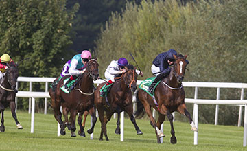 John F Kennedy - Leopardstown 13/09/2014