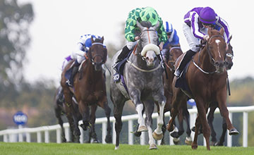 The Grey Gatsby (left) and Ryan Moore duelling with Australia (right) to win the Irish Champion Stakes