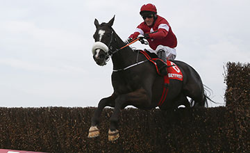 PA Sport Don Cossack image