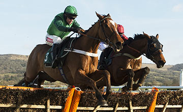 Peace And Co (Barry Geraghty)
