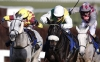Many Clouds could return to Aintree next year