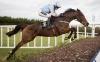 Leopardstown: Super Sceaux evens for Racing Post Arkle