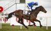 Fly fries rivals to win fifth Irish Champion Hurdle