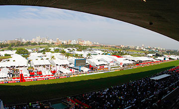 General view at Greyville Racecourse