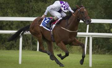 Latest Racing News: Sanus out to show Guineas credentials in Tyros Stakes