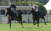 France: Karaktar impresses in Longchamp gallop