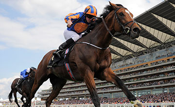 Gleneagles: decision to be made tomorrow on his participation at Ascot