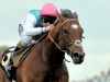 Frankel won ten Group 1 races for the Juddmonte operation