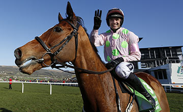 Faugheen: favourite for the Champion Hurdle may return on January 29